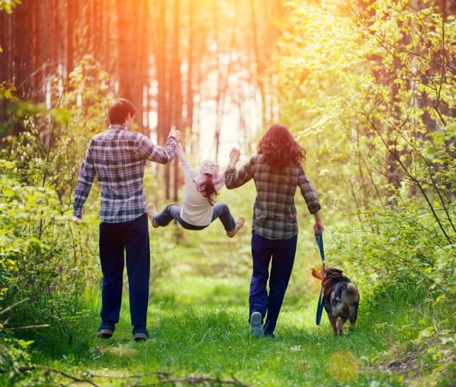 Happy family walking with dog in the forest